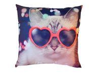 Fotopolštářek Kočka v brýlích 40x40